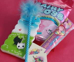 Fairy Floss Party Bag