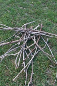 A jumble pile of sticks