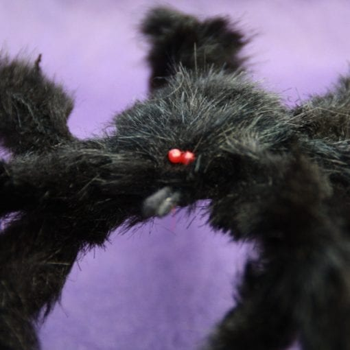 Black Scary Spider
