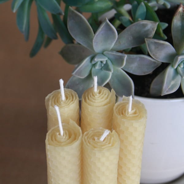 """Smells Like Honey"" Beeswax Candles"