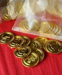 Pirate Money Treasure